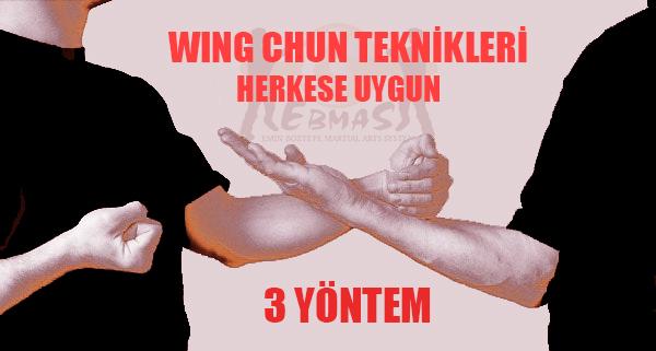 Wing Tzun Teknikleri
